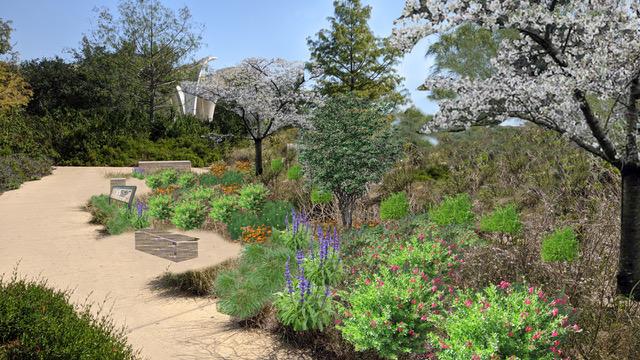 Rendering of Pollinator Garden